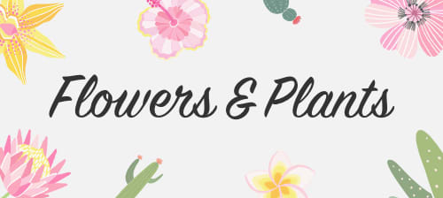 Preview Flowers & Plants Contest