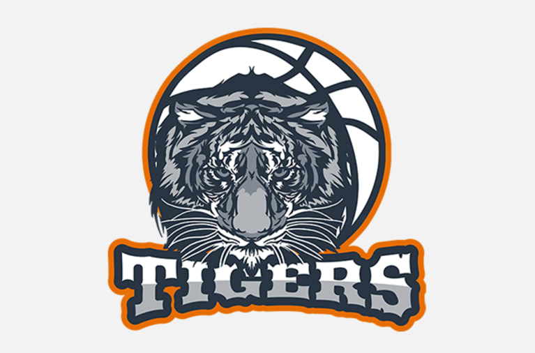 Example of a digitised team logo