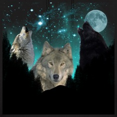 wolf Background forest scene 2 CR Hoodies
