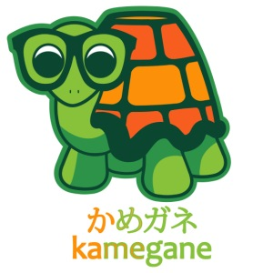 kame - megane