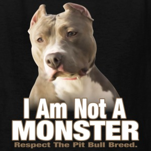 Pit Bull Respect - Kids' T-Shirt