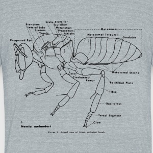 Anotomy of the Bee - Unisex Tri-Blend T-Shirt by American Apparel