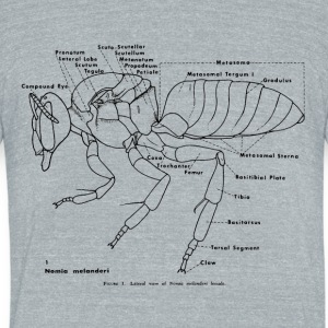 Anotomy of the Bee - Unisex Tri-Blend T-Shirt