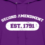 Design ~ Ladies Hooded Sweater: Second Amendment