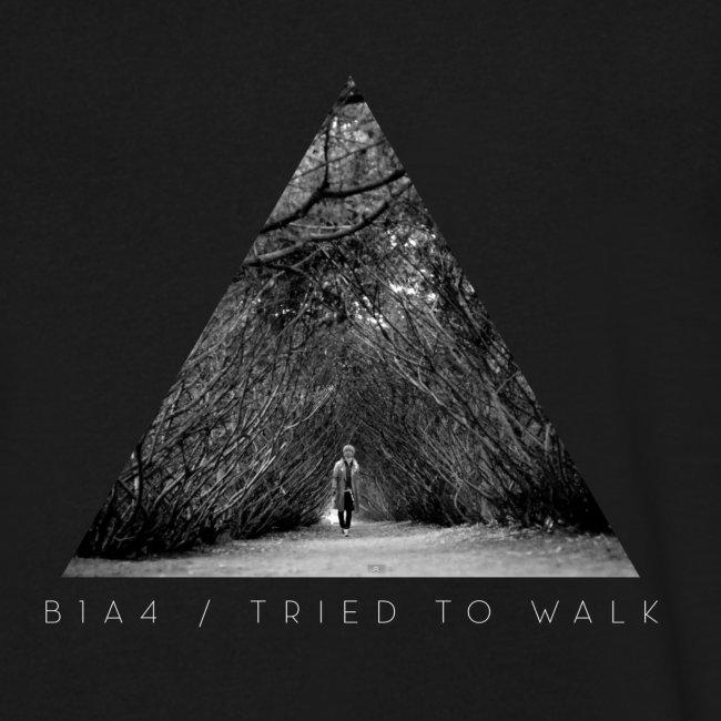 B1A4 - Tried To Walk