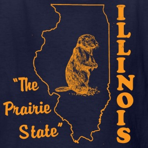 illinois, the prairie state kids t shirt - Kids' T-Shirt
