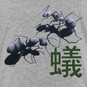 API - Japanese Ants and Kanji - Kids' Premium T-Shirt