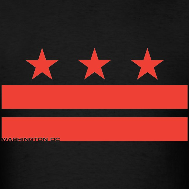 Washington DC T-Shirt V-2