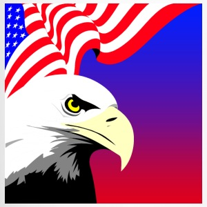 Eagle and Flag Bottles & Mugs - Travel Mug