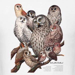 Owls of the Northeast - Men's T-Shirt
