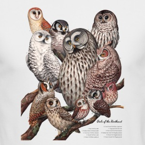 Owls of the Northeast - Men's Long Sleeve T-Shirt by Next Level