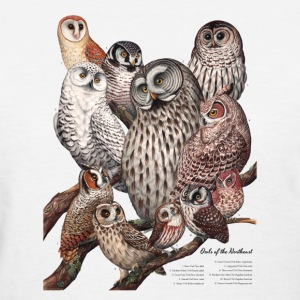 Owls of the Northeast - Women's T-Shirt