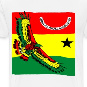 Ghana Quest for Brazil World Cup 2014 - Men's Premium T-Shirt