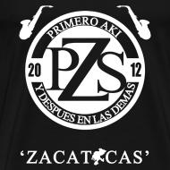 Design ~ PZS 'Zacatecas' | Caballero