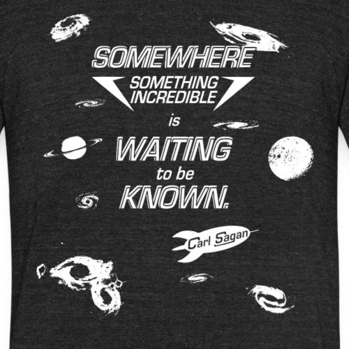 Carl Sagan - Something Incredible