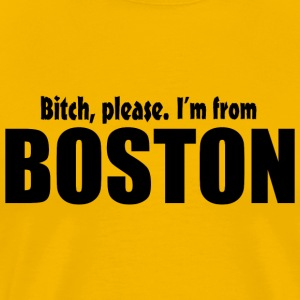 Bitch Please From Boston Pride Funny Shirt TShirts T-Shirts - Men's Premium T-Shirt