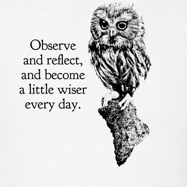 Observe and reflect - Basic Tee