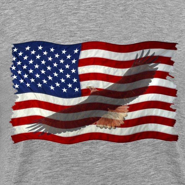 Eagle In  Flag