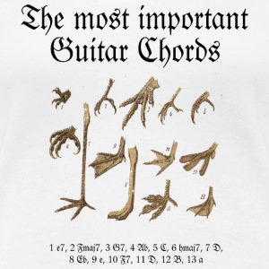 The most important Guitar Chords