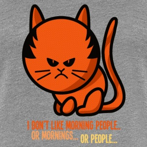 Not a morning person / I don't like morning people Women's T-Shirts - Women's Premium T-Shirt