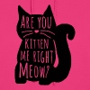 Are You Kitten Me Right Meow - Women's Hoodie