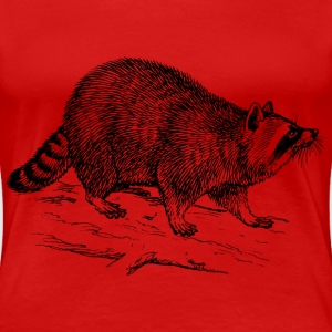 raccoon - Women's Premium T-Shirt