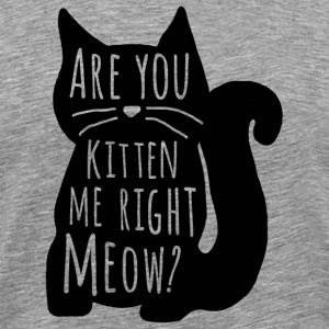 Are You Kitten Me Right Meow - Men's Premium T-Shirt