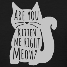 Kitten Me Gray Women's T-Shirts