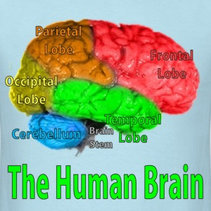 The Human Brain - Men's T-Shirt