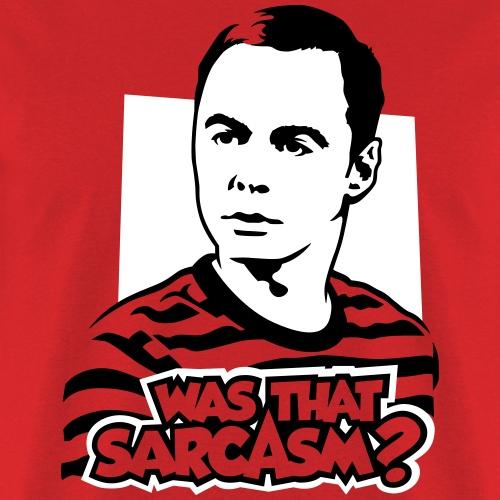 The Big Bang Theory: Was that sarcasm?