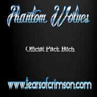 Design ~ Phantom Wolves Bitch Mug