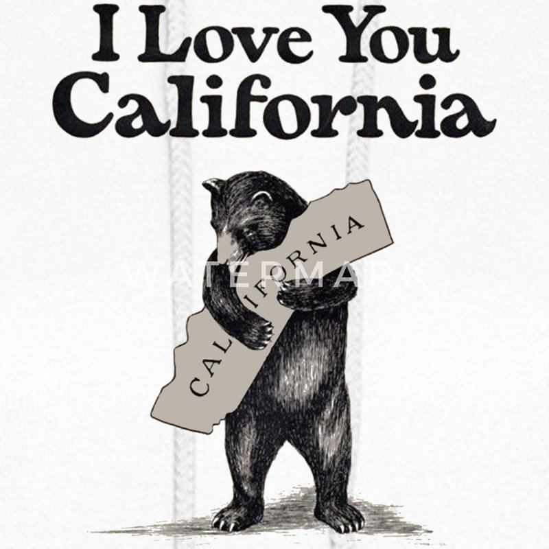 I Love You California Bear State Hug Hoodies - Women's Hoodie