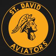 Design ~ St David