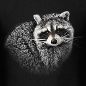 A Gentle Raccoon - Men's T-Shirt