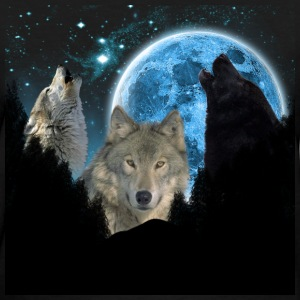 Wolves Twilight Blue Moon C.png Women's T-Shirts - Women's T-Shirt