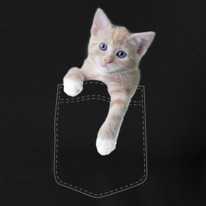 Little Kitty in Pocket T-Shirts - Men's Premium T-Shirt