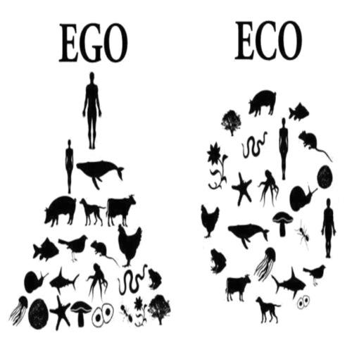 animal rights ego vs eco