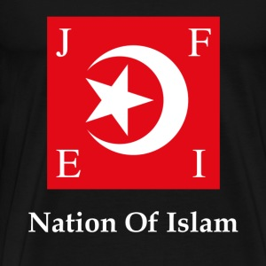 Nation Of Islam Flag T-Shirts - Men's Premium T-Shirt