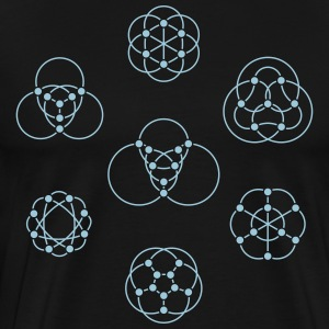 Petersen Family Graphs T-Shirts - Men's Premium T-Shirt