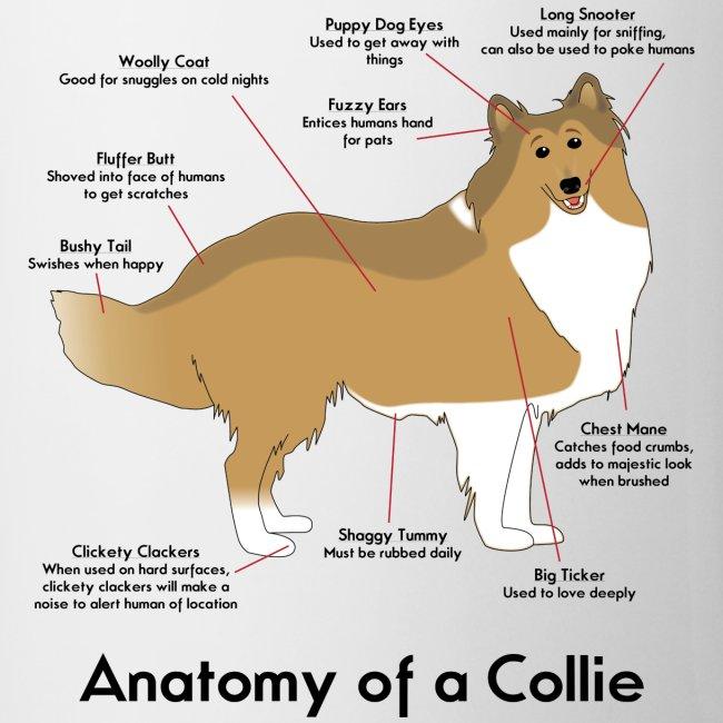 Holly The Collie Anatomy Of A Collie Mug Coffeetea Mug
