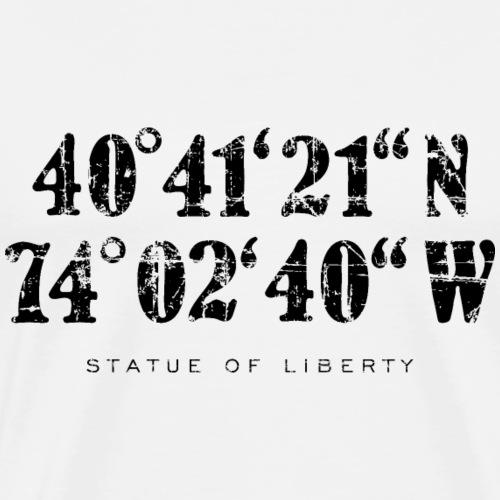 Statue of Liberty Coordinates Vintage Black