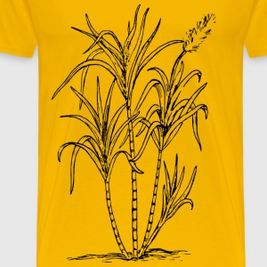Sugar cane - Men's Premium T-Shirt