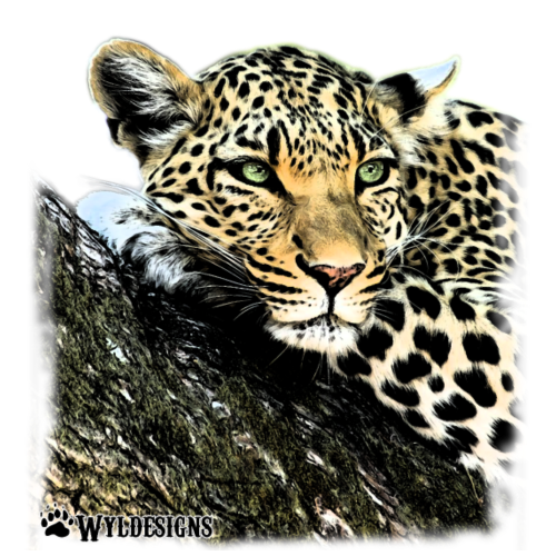 Leopard Cutout