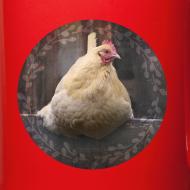 Design ~ Sitting pretty holiday mug