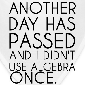ANOTHER DAY HAS PASSED - AND I DIDN'T USE ALGEBRA  Caps - Bandana