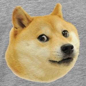 Doge T-Shirts   Spreadshirt