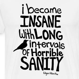 I Became Insane... Poe Men's T-Shirt - Men's Premium T-Shirt