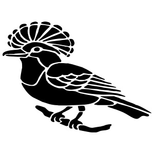 Crested bird