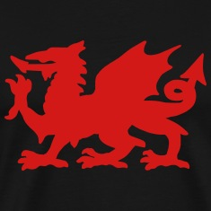 Welsh Dragon T-Shirts