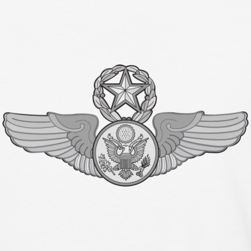 MASTER ENLISTED WINGS
